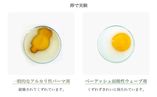 卵で実験-一般的なアルカリ性パーマ剤の場合、卵は破壊されてくずれています。ペーアッシュ弱酸性ウェーブ剤の場合、卵はくずれずきれいに保たれています。